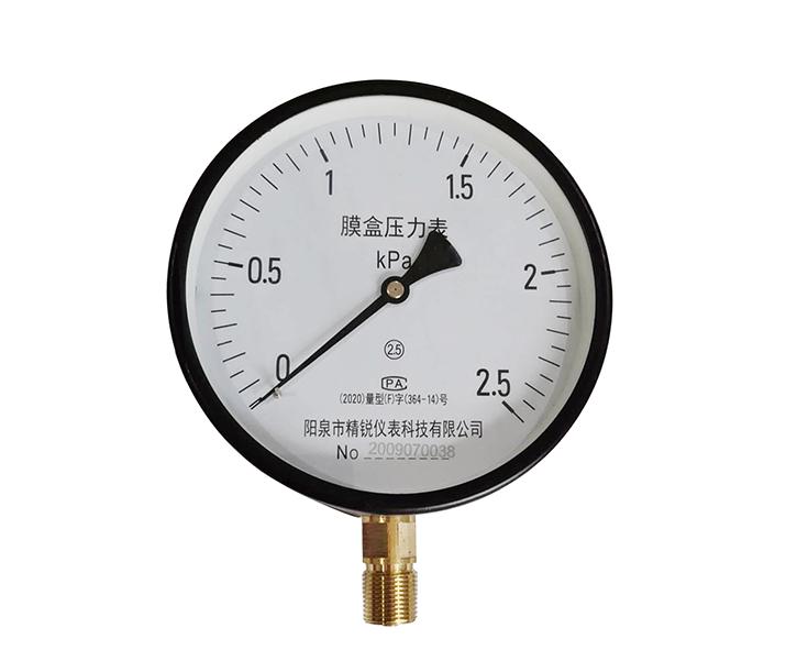 膜盒壓力表YE100